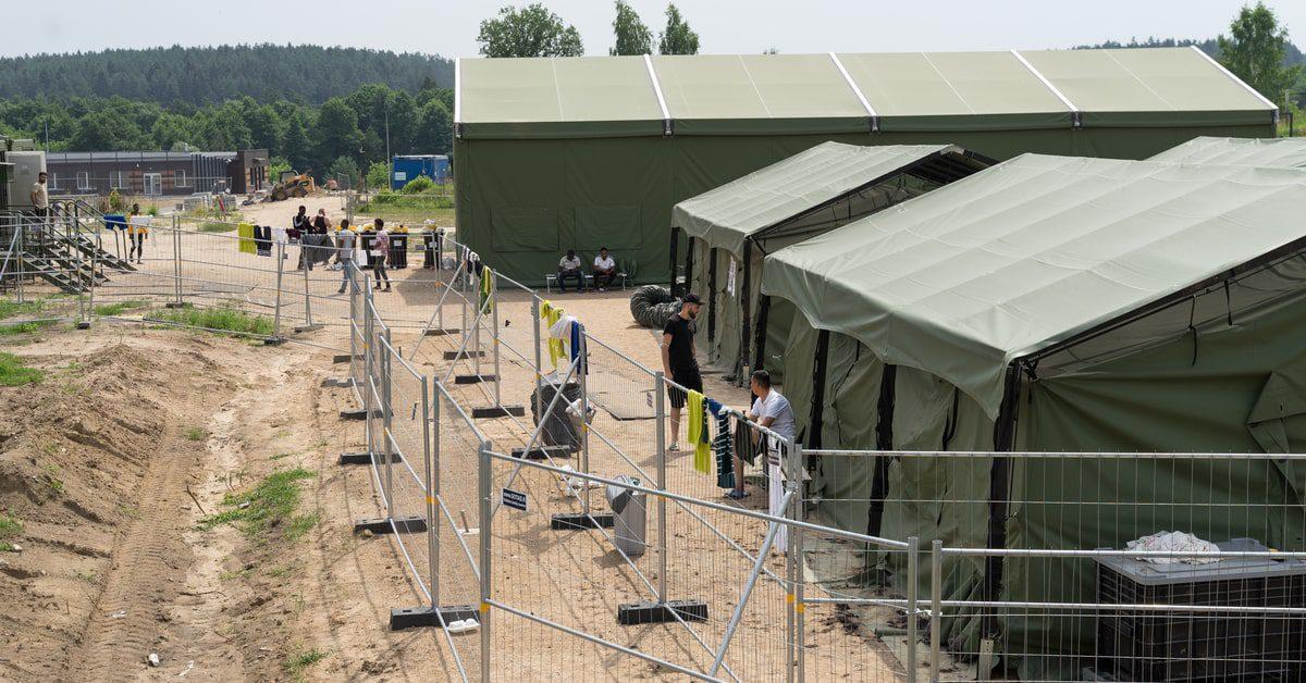 """asylbetrug-per-gesetz:-die-ampel-ist-scharf-auf-den-""""spurwechsel"""""""